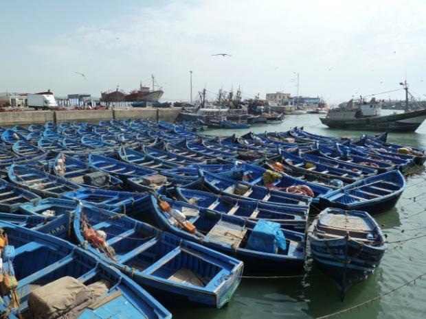 Blue fishing boats, Essaouira,Morocco.